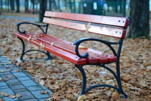 autumn-bench-dry-leaves-95684